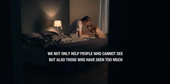 オランダロイヤル盲導犬財団に関連した画像-05