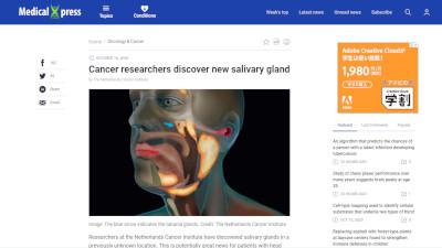 オランダ 人体 新たな臓器に関連した画像-02