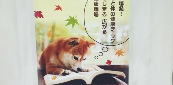 観光客として日本に行けば勉強になる27のことに関連した画像-19