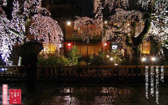 外国人に人気の日本の旅館 2014に関連した画像-04