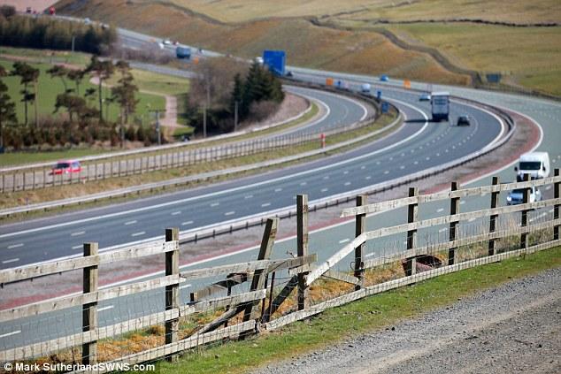 牧羊犬がトラクターを運転し、高速道路が交通渋滞に関連した画像-03