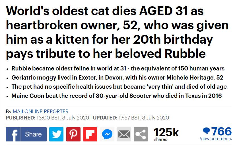 猫 長寿 メインクーンに関連した画像-02