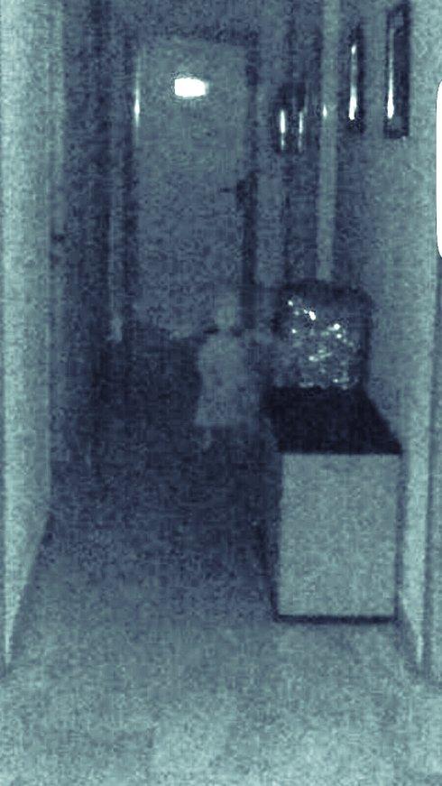 ベガス・デル・ヘニルに関連した画像-04