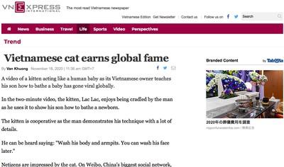 ベトナム 猫 モデル
