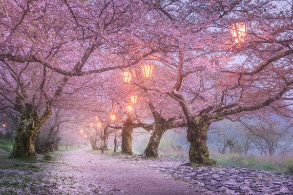 絶対に日本へ行くべきではない15の理由に関連した画像-05