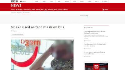 イギリス マスク ヘビに関連した画像-02