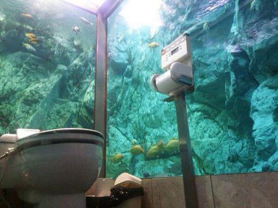 日本の珍トイレに関連した画像-07
