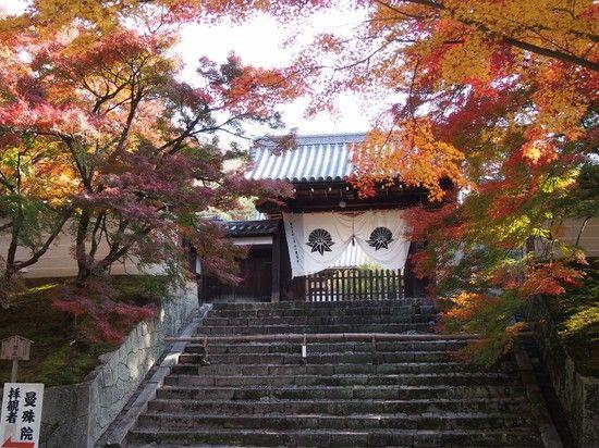 京都のお寺が次々と撮影禁止に関連した画像-09