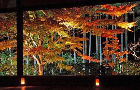 京都のお寺が次々と撮影禁止に関連した画像-02