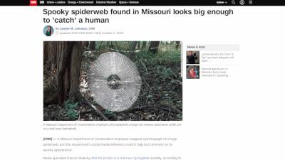 アメリカ クモの巣 SNSに関連した画像-02