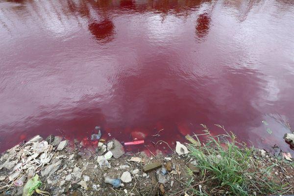 血の川に関連した画像-02