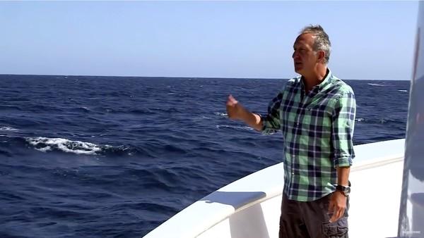 絶好のタイミングでシロナガスクジラが登場するハプニングに関連した画像-03