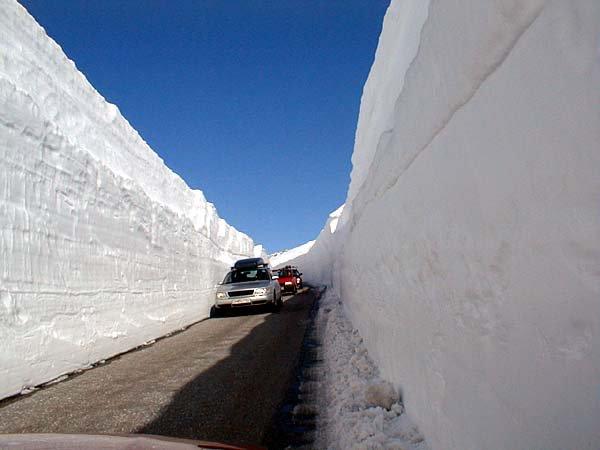 ロンドン歴史的大雪に関連した画像-10