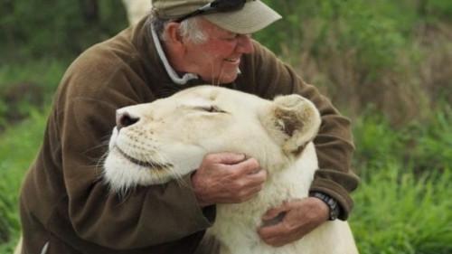 自然保護活動家 白ライオン 南アフリカに関連した画像-01