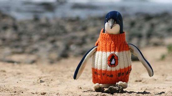 ペンギンにセーターをに関連した画像-01