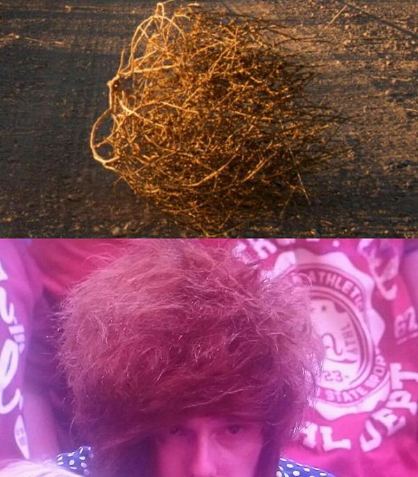 ウィンブルドン観戦中の男性の髪型が完全に「鳥の巣」に関連した画像-06