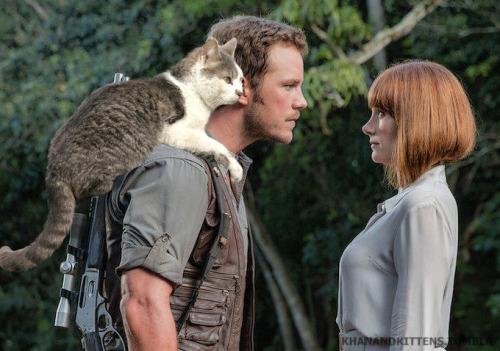 「ジュラシック・ワールド」の恐竜を猫にに関連した画像-11