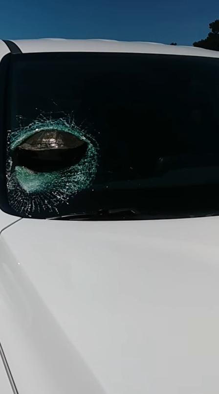 車 運転 フロントガラス カメに関連した画像-03