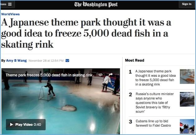 魚氷漬けスケートリンクに関連した画像-05
