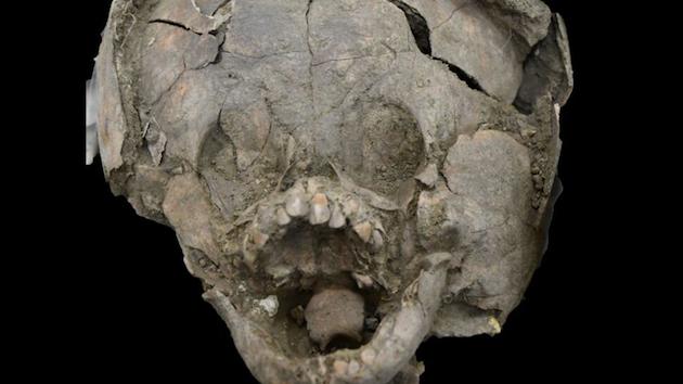 サランゴ古代遺跡発掘地に関連した画像-01