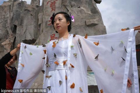 蝶の妖精に関連した画像-02