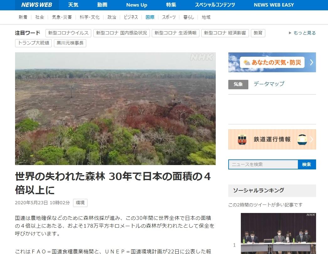 森林 世界 日本に関連した画像-02