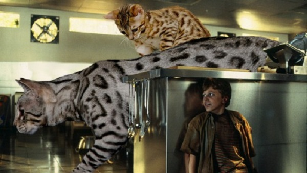 「ジュラシック・ワールド」の恐竜を猫にに関連した画像-08