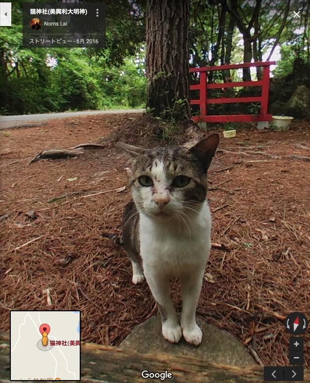 猫神社(美興利大明神)に関連した画像-05