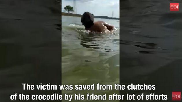 インド ワニ 湖に関連した画像-04