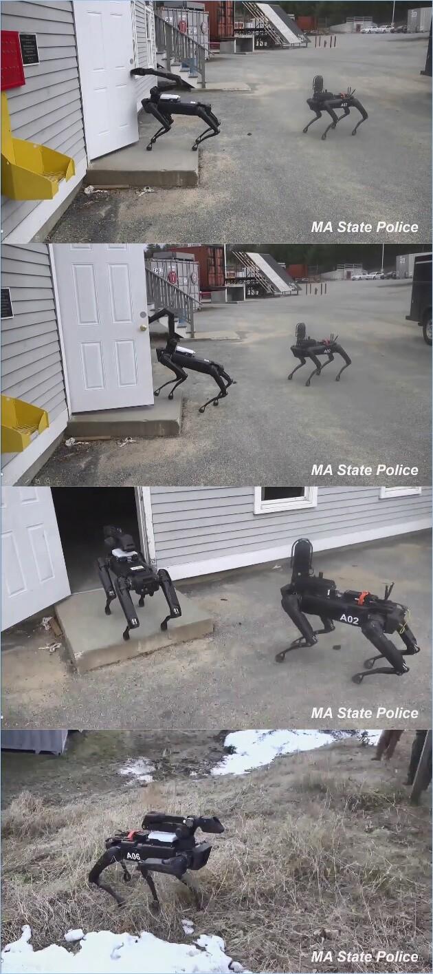 ロボット警察犬「スポット」に関連した画像-02