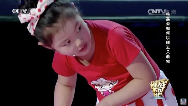 動物を次々と催眠術にかけていく中国の天才少女に関連した画像-07