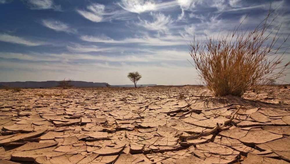 地球 貧酸素化 滅亡