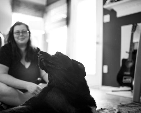 愛犬Dukeyとの最期の日を記録したアルバムに関連した画像-20