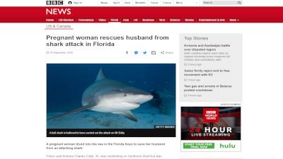 アメリカ 妊娠 サメに関連した画像-02