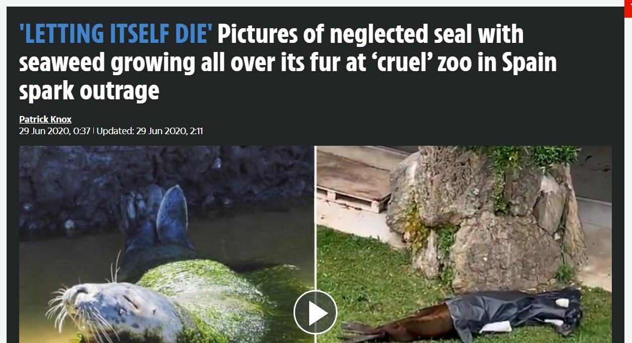 スペイン 動物園 アザラシに関連した画像-02