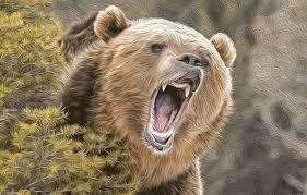 ロシア 熊 動画 餌付けに関連した画像-01