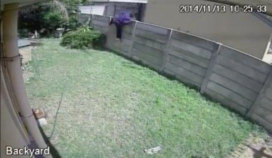 凶暴な犬に追いかけられた泥棒に関連した画像-04