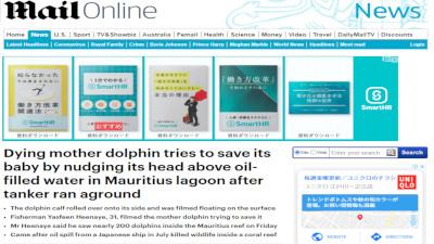 モーリシャス諸島 イルカ 死亡 母子に関連した画像-02