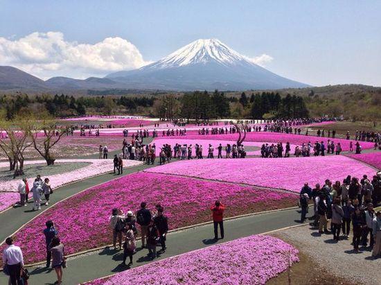 美しい日本に関連した画像-06