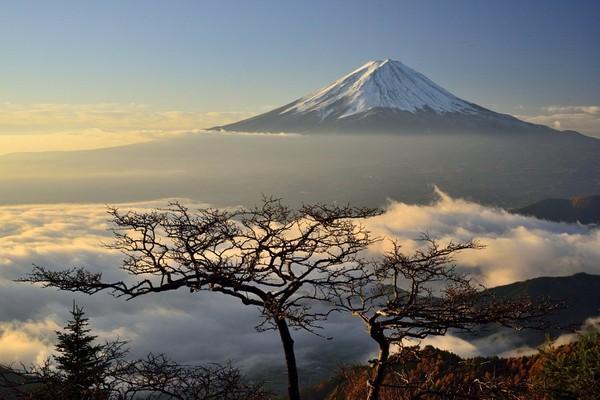 絶対に日本へ行くべきではない15の理由に関連した画像-14