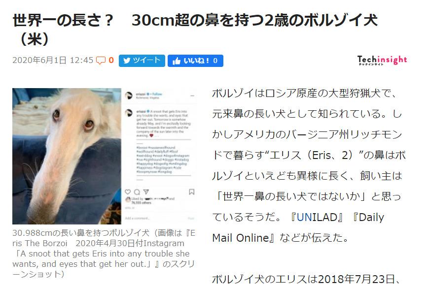 犬 ボルゾイ 鼻 長いに関連した画像-02