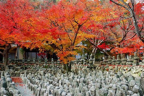 京都のお寺が次々と撮影禁止に関連した画像-12
