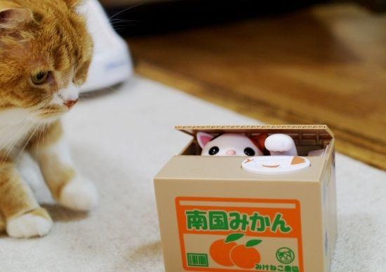 ネコの貯金箱『いたずらBANK』に関連した画像-01