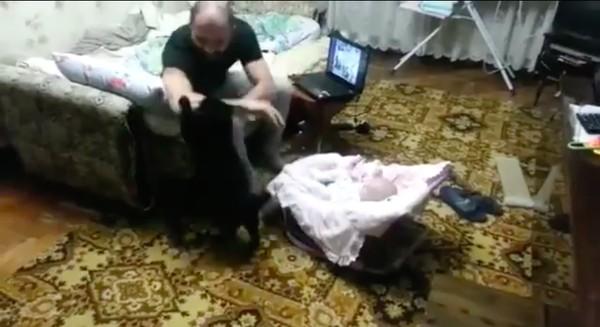 子供を守るネコに関連した画像-03