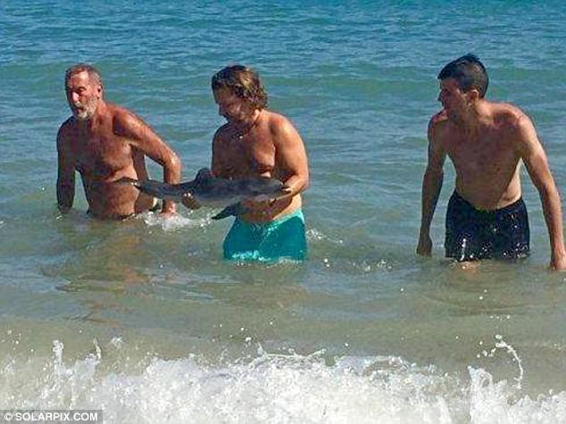 イルカを捕まえて写真を撮る家族の写真 width=