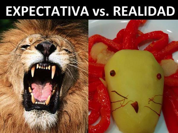 ライオン、海老を食べるに関連した画像-10