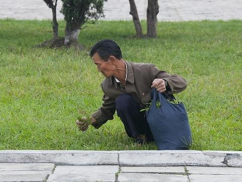 絶対に見てはいけない北朝鮮の実態に関連した画像-24