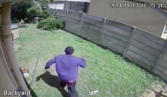 凶暴な犬に追いかけられた泥棒に関連した画像-03