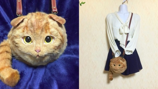 猫バッグに関連した画像-07