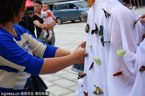 蝶の妖精に関連した画像-04